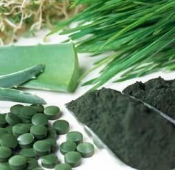 Chlorella Suplement